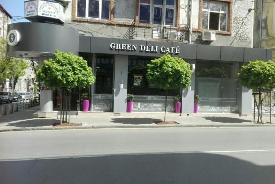 GREEN DELI CAFE - УЛ. Г. С. РАКОВСКИ 165 (6)